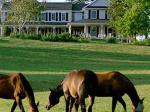 Westwynd Farm